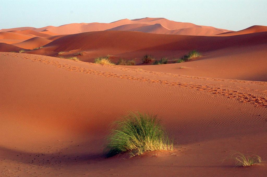 sahara-desert-algeria