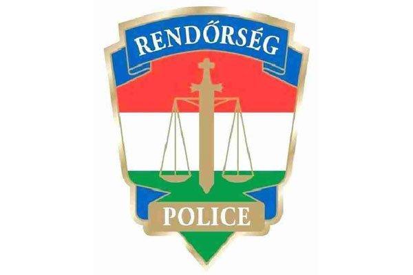 rendorseg_logo131