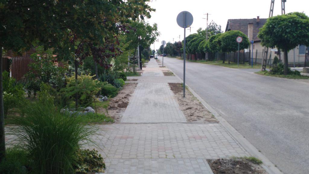 Toldi utca, járda, sok bokorral