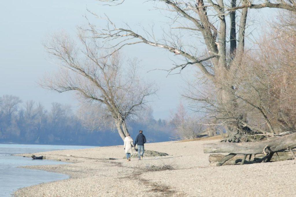 Duna-part, fák, sétáló emberek